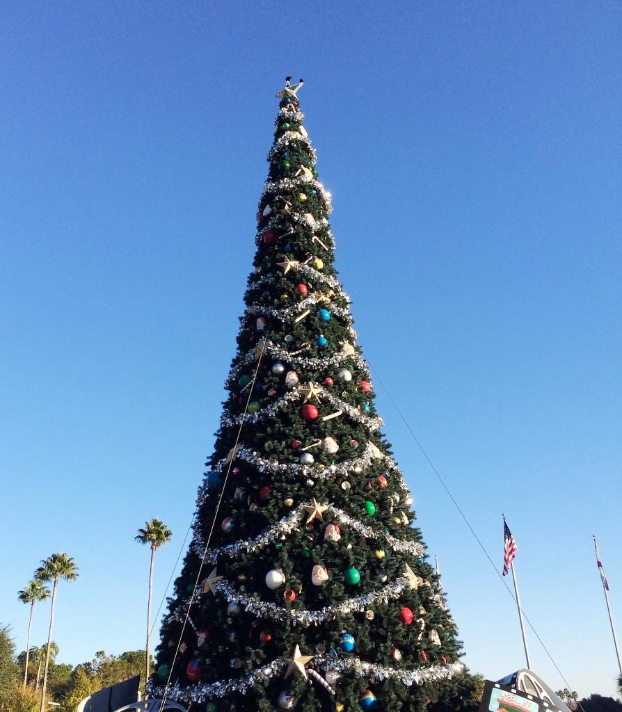the Christmas tree outside Hollywood Studios