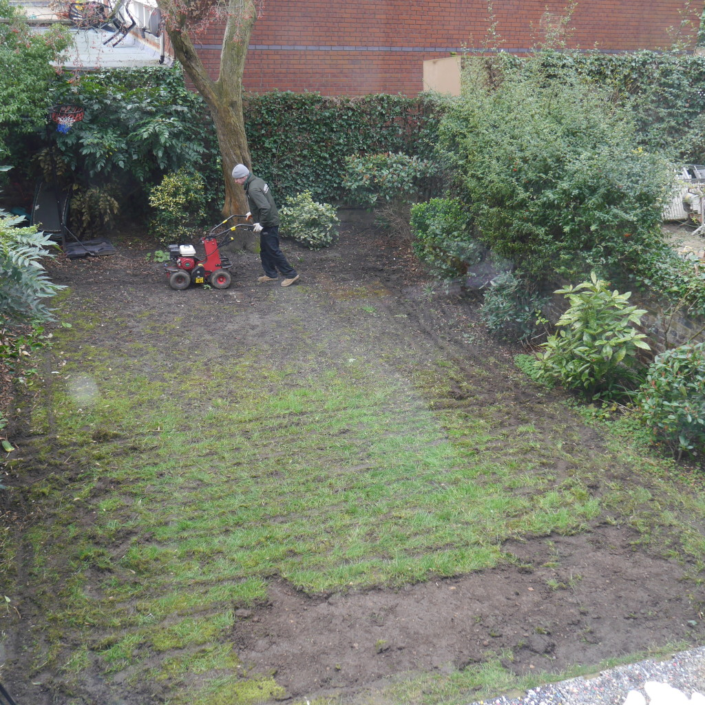 Easigrass moves in on our mud pit