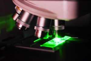 cancer under the lens of the microscope Kidney cancer can be subdivided into several different types, based on the appearance of the cancer cells under a microscope as well as other genetic factors.