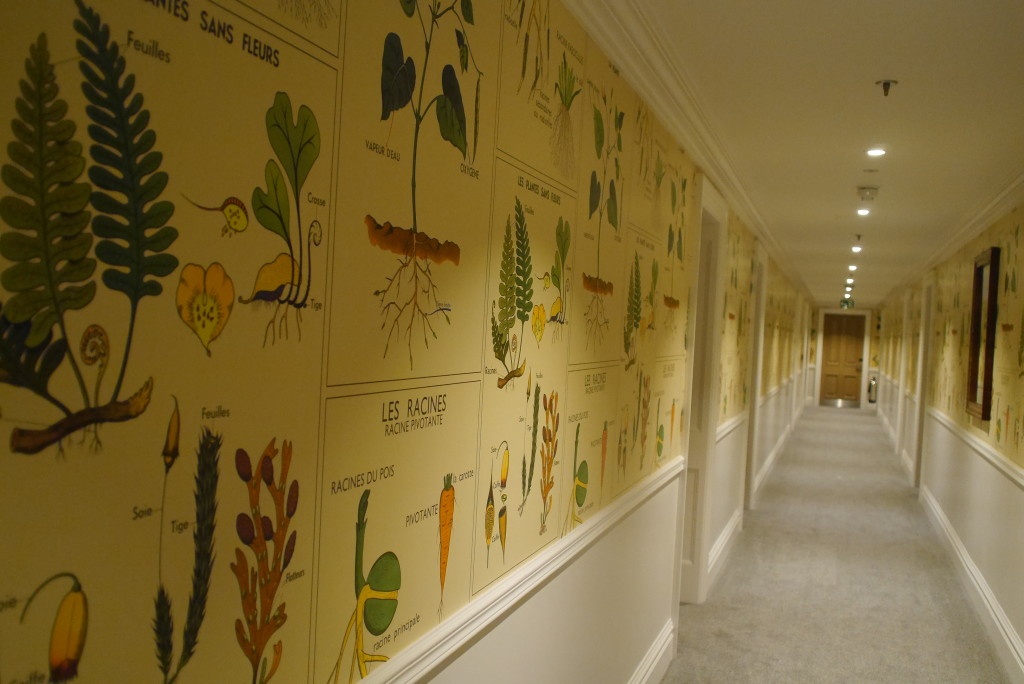 Kemp designed wallpaper - inspired by a French poster in a school
