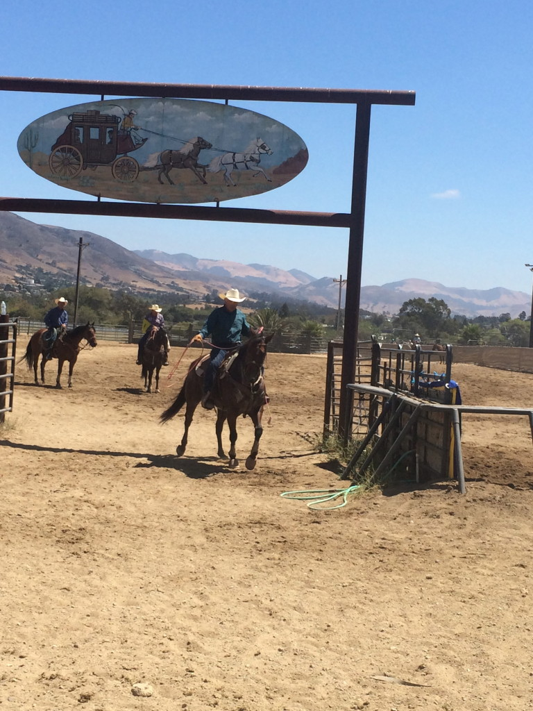 cowboy roping competition at Madonna Inn