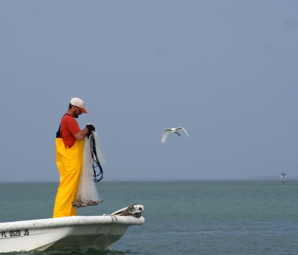 fishermen at marina max